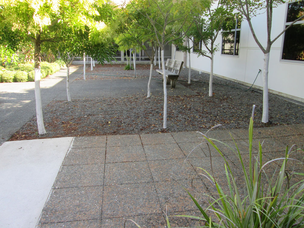 Wairarapa Hospital Gardens